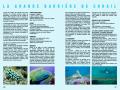 Grande barriere de corail Australie 3.png