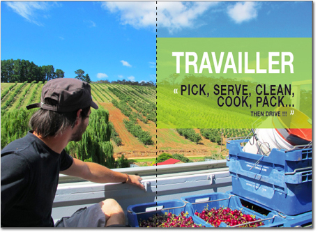travailler-contacts-picking-australie-pvt