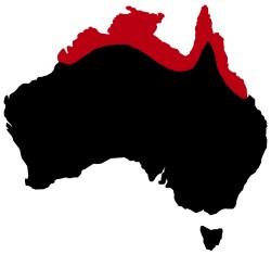 regions-crocodile-australie