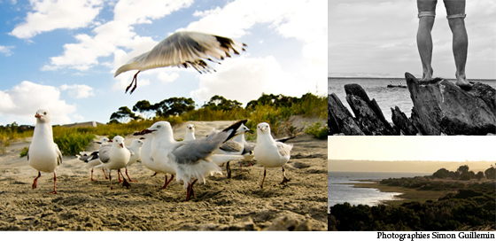 Découverte de Kangaroo Island
