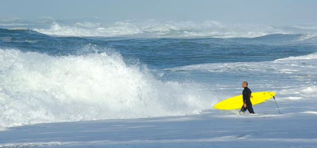 Où surfer à Sydney – Guide complet