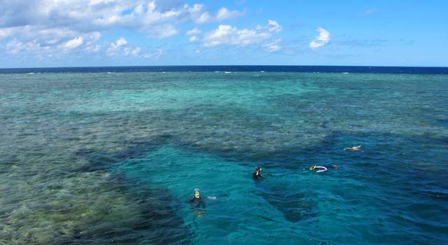 comment aller de sydney a la grande barriere de corail