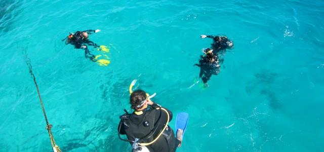 La Grande Barrière de Corail, conseils pour bien choisir son excursion