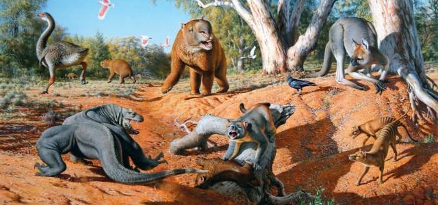 Les animaux disparus-espèces éteintes du fait de l'homme et son mode de vie Aust-megafauna1-640x300