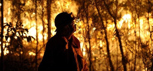 Des incendies dévastent la région de Sydney