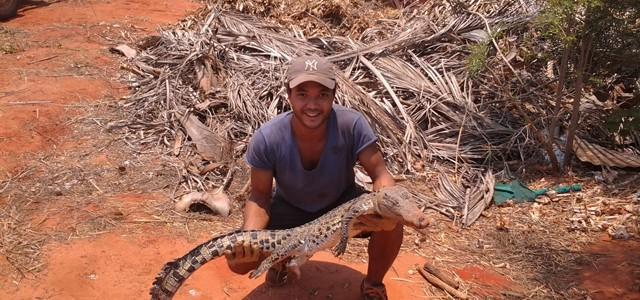 J'ai travaillé dans une ferme de crocodiles