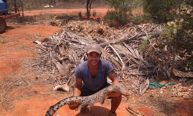 Travailler ferme crocodiles Australie job zoo