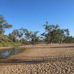 Un backpacker allemand survit au bush australien en mangeant des mouches