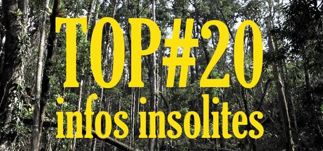 20 infos insolites sur l'Australie