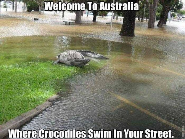 Via Facebook MeanwhileInAustralia 20 bonnes raisons de ne PAS partir en Australie