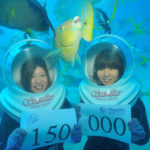Moniteur de plongée en Australie, le job de mes rêves