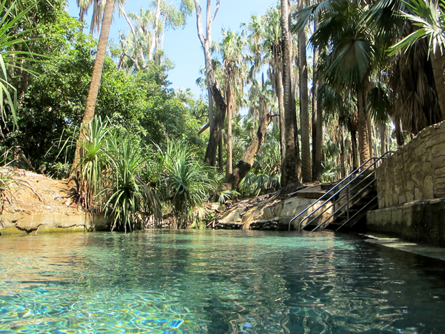 Mataranka Thermal Springs Australia