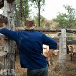 Volontariat dans un ranch en Australie