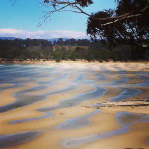 Lime Bay, Péninsule de Tasman