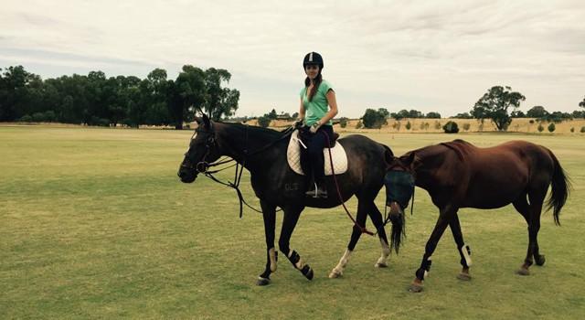 Mon expérience de job avec des chevaux en Australie