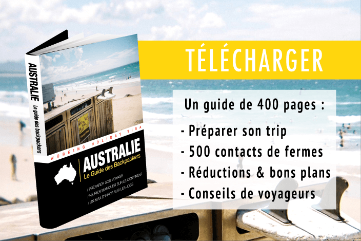 Télécharger Le Guide des Backpackers