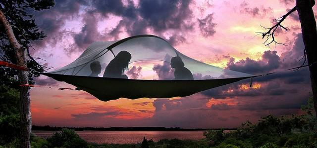 Insolite : une tente suspendue dans les arbres