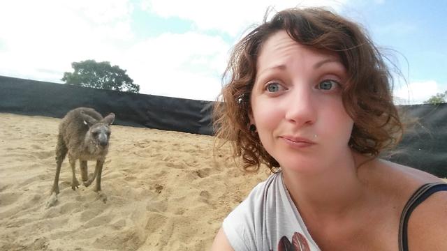 Sauver Kangourou Australie 4