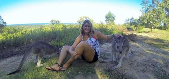 Travailler dans un refuge animalier en Australie