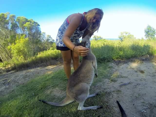job animaux australie