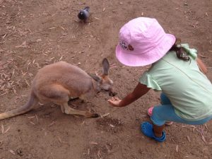 Recherche fille au pair australie