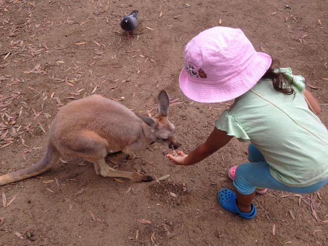 Jeune fille au pair Gold Coast 3