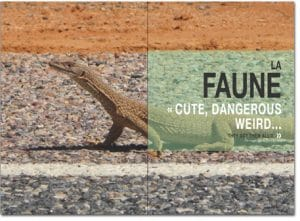 Faune Australie sommaire