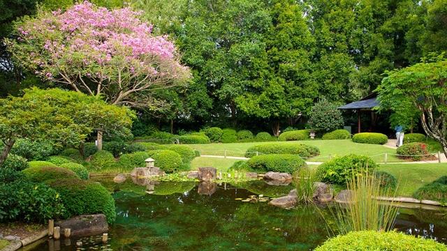 Botanic Gardens à Brisbane