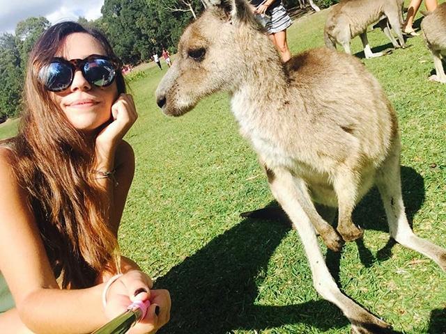 what to do around sydney morriset national park