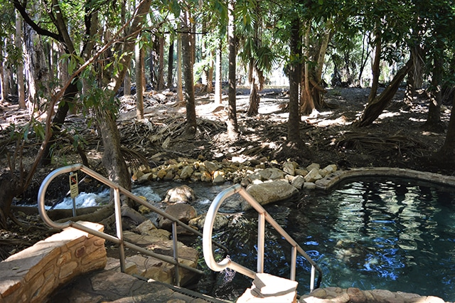 Mataranka - Thermal Pool