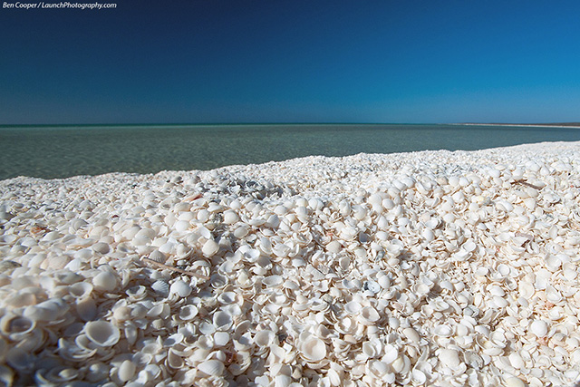 Shell Beach Australia best beaches