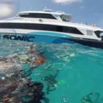 Une journée sur la Grande Barrière de Corail avec Silversonic