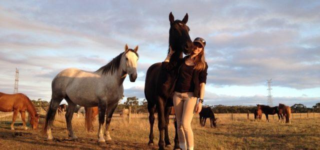 Travailler en Workaway dans un centre équestre thérapeutique en Australie