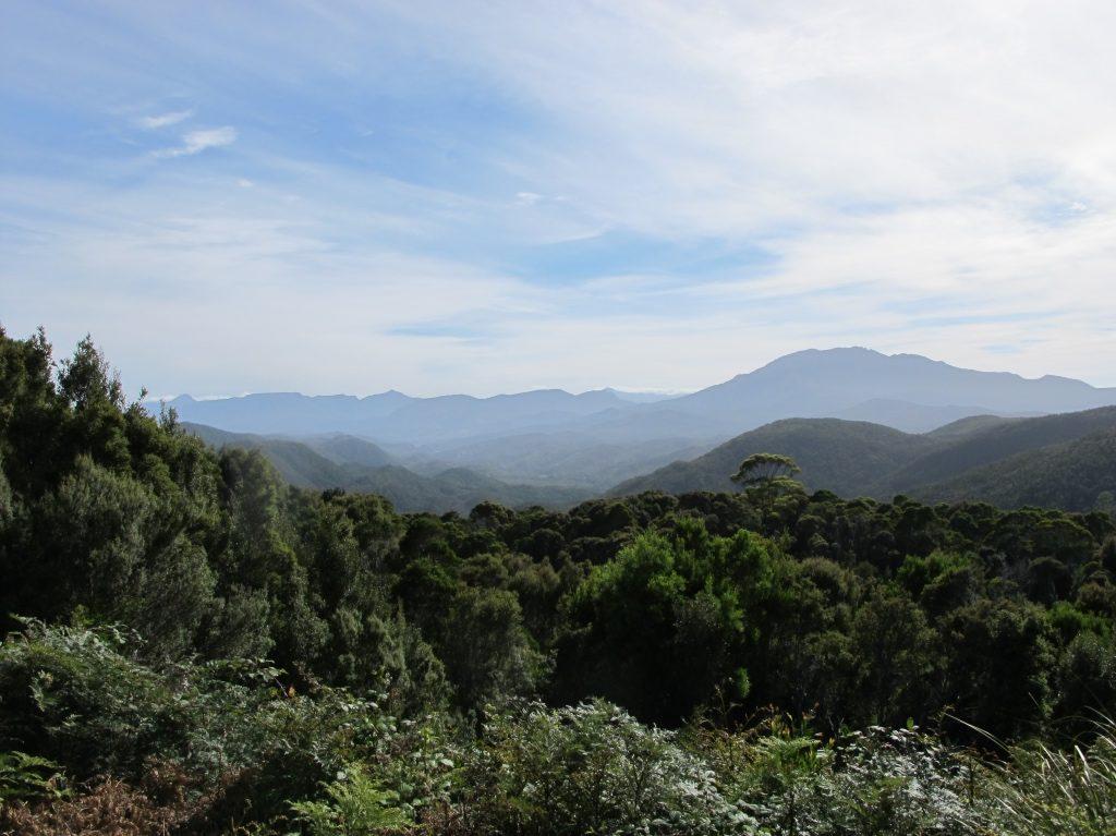 Tasmanie 6