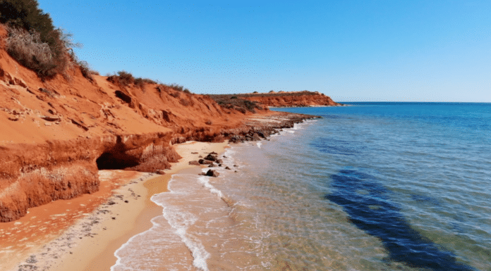 coral coast0
