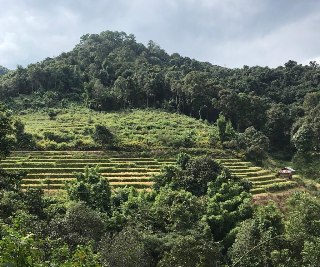 road trip thailande 3