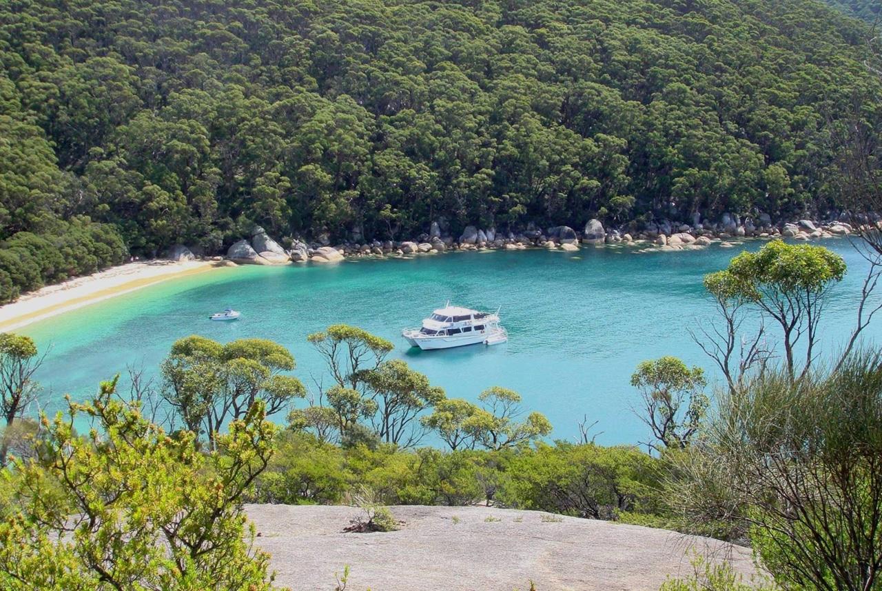 wildlife coast cruises  phillip island  victoria