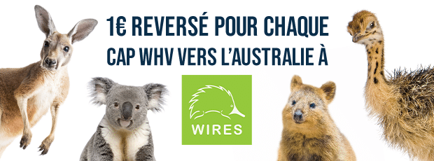 CAP Working Holiday Chapka Assurances - Association Wires - Soutien faune et flore Australie
