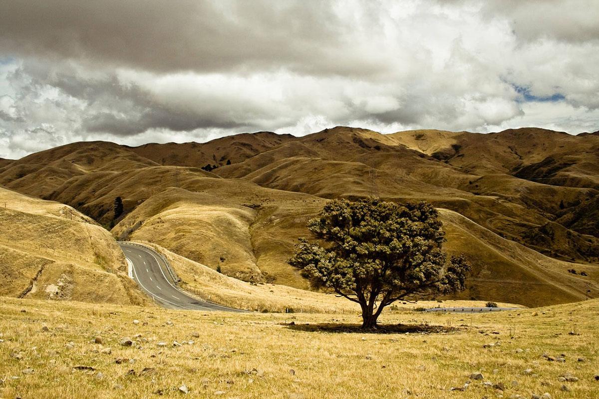 Fahrzeug mieten Neuseeland
