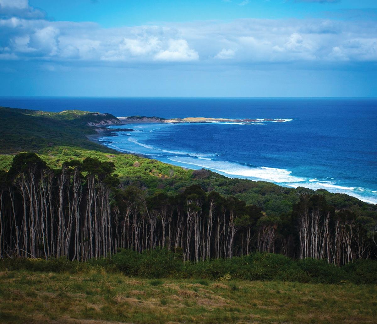king island iles tasmanie